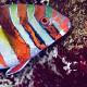 Choerodon fasciatus 01